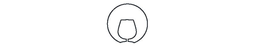 Notre selection de Cognac - Esprit Vins